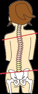 産後の骨盤矯正 腰痛予防 自由が丘